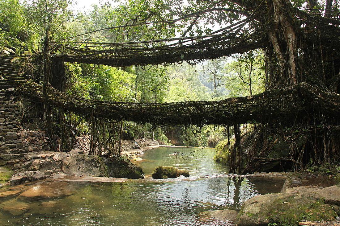 уникальные мосты