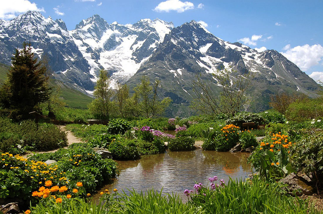 Альпийский ботанический сад в Коль дю Лотаре