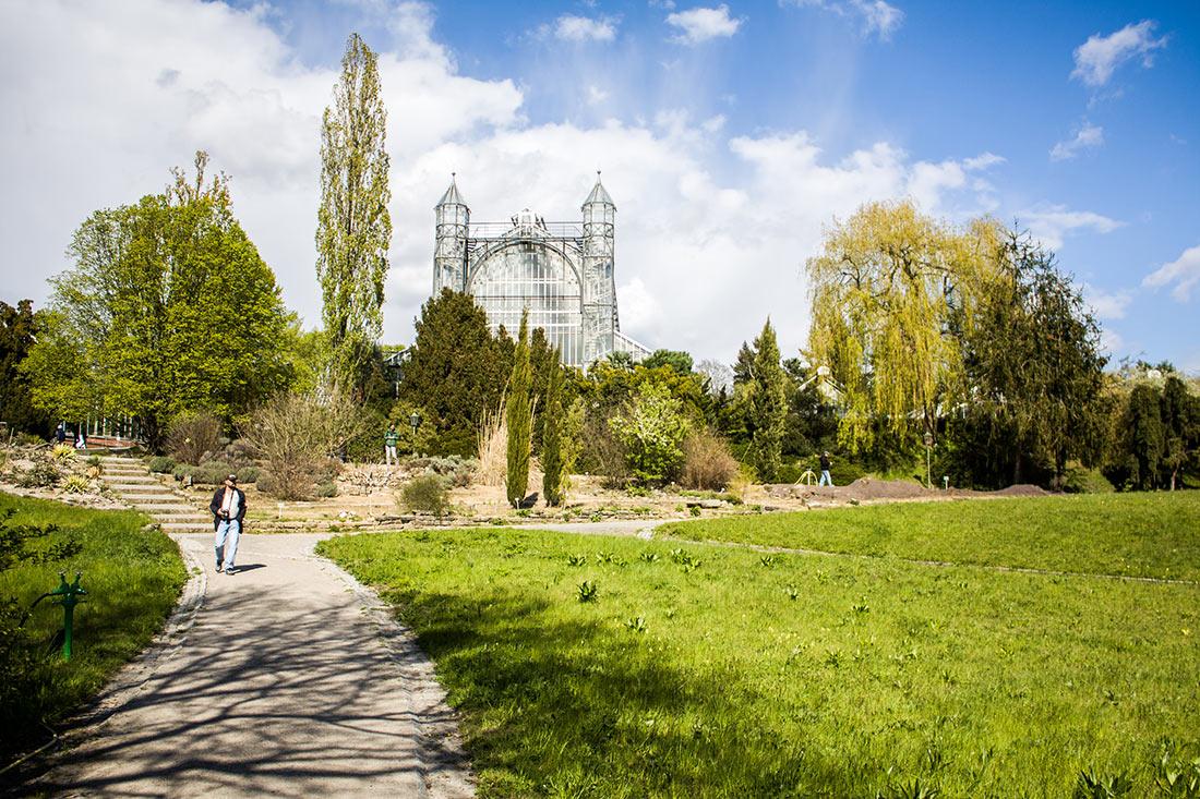 Ботанический сад и ботанический музей Берлин-Далем