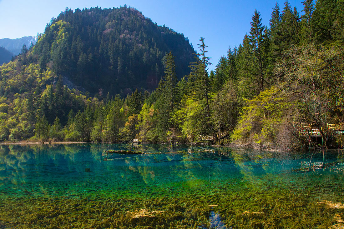 Озеро Пять цветков