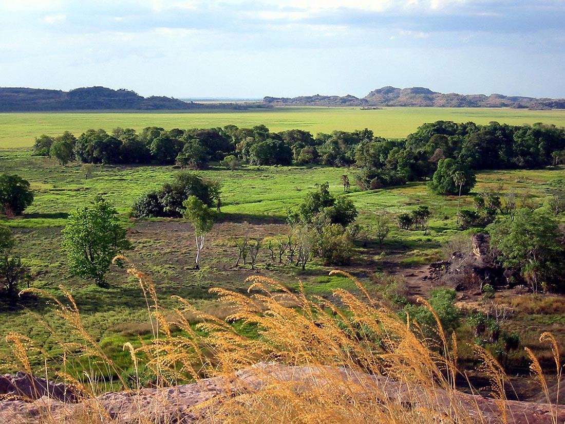 национальный парк Австралии Какаду