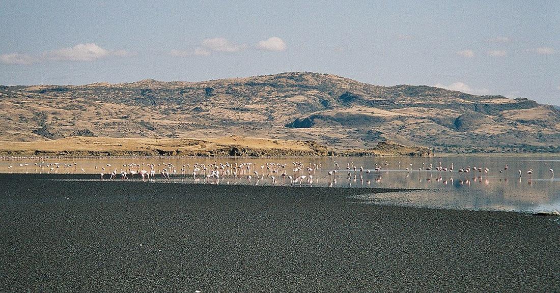 Озеро Натрон