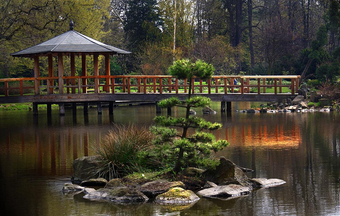Щитницкий парк