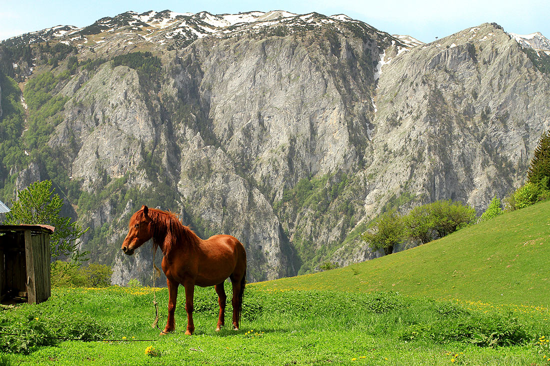 Горы Ругова