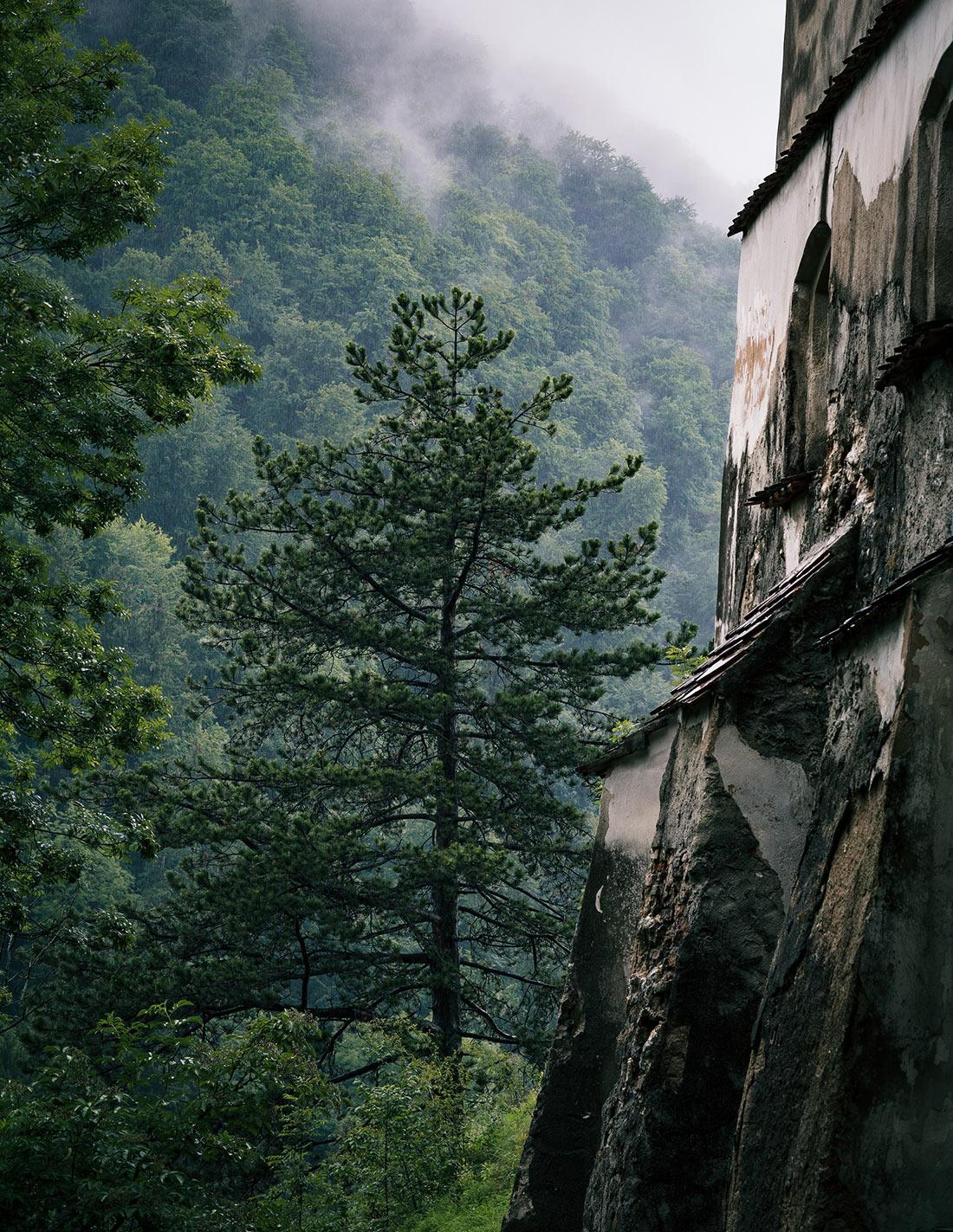 замок Бран