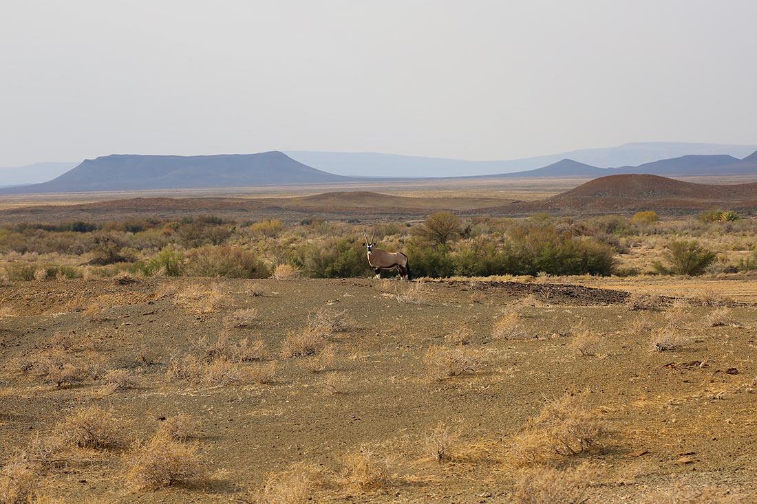 Национальный парк Танква-Кару