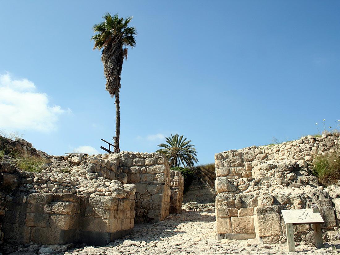 Церковь Мегиддо