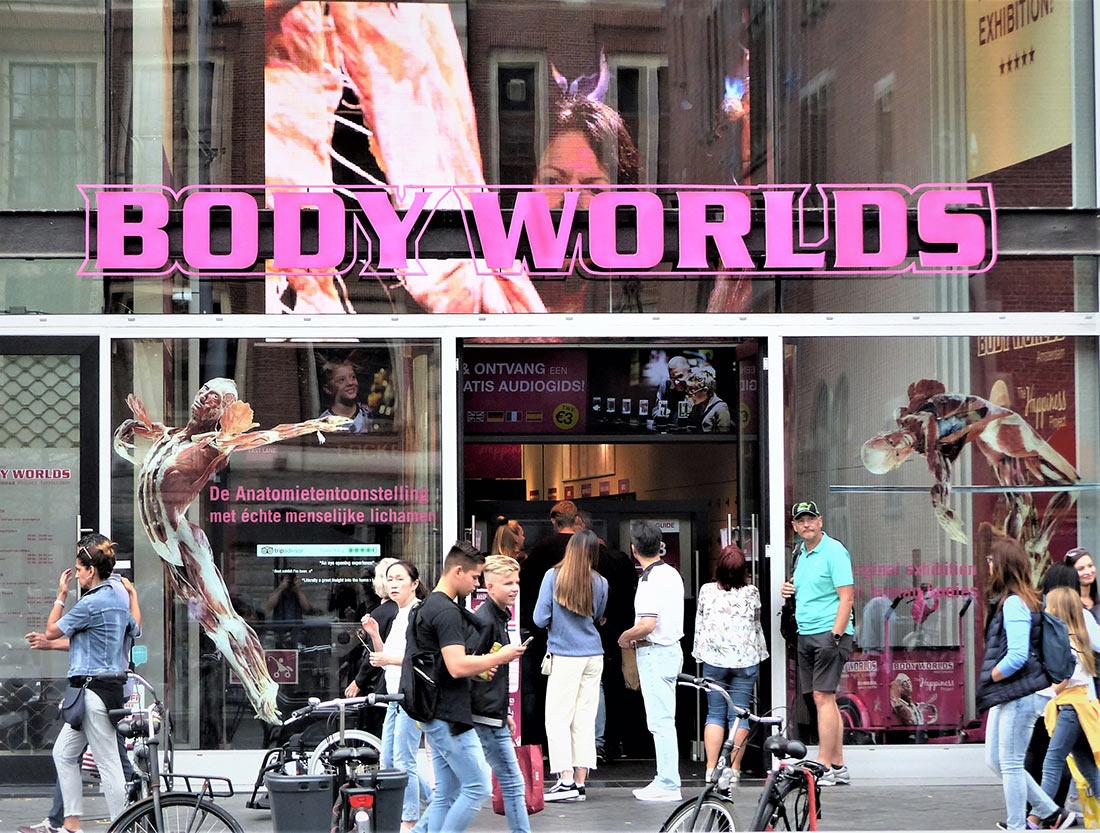 Музей человеческого тела Body Worlds в Амстердаме