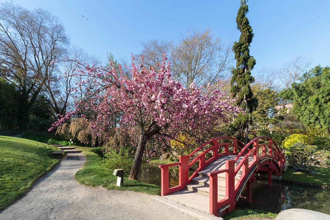 Японский сад в Тулузе