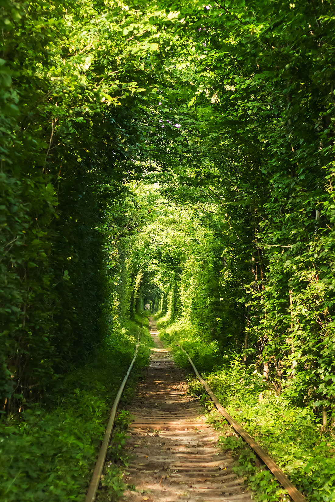 Тоннель любви в Клевани