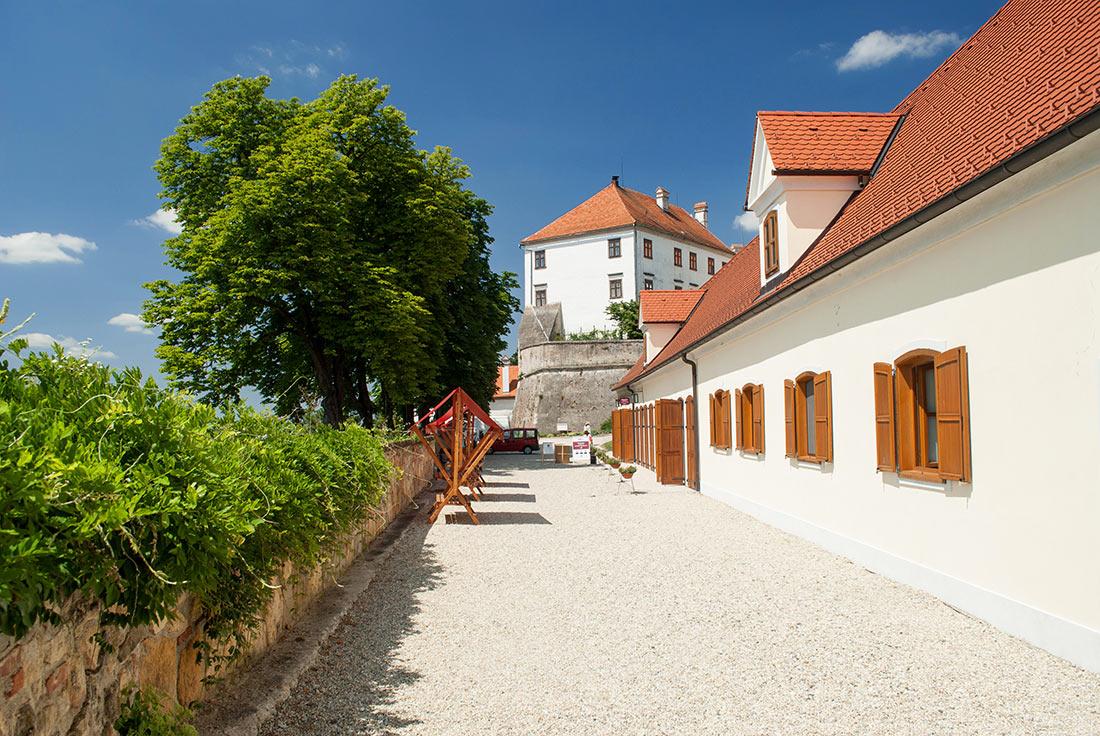Замок Птуй