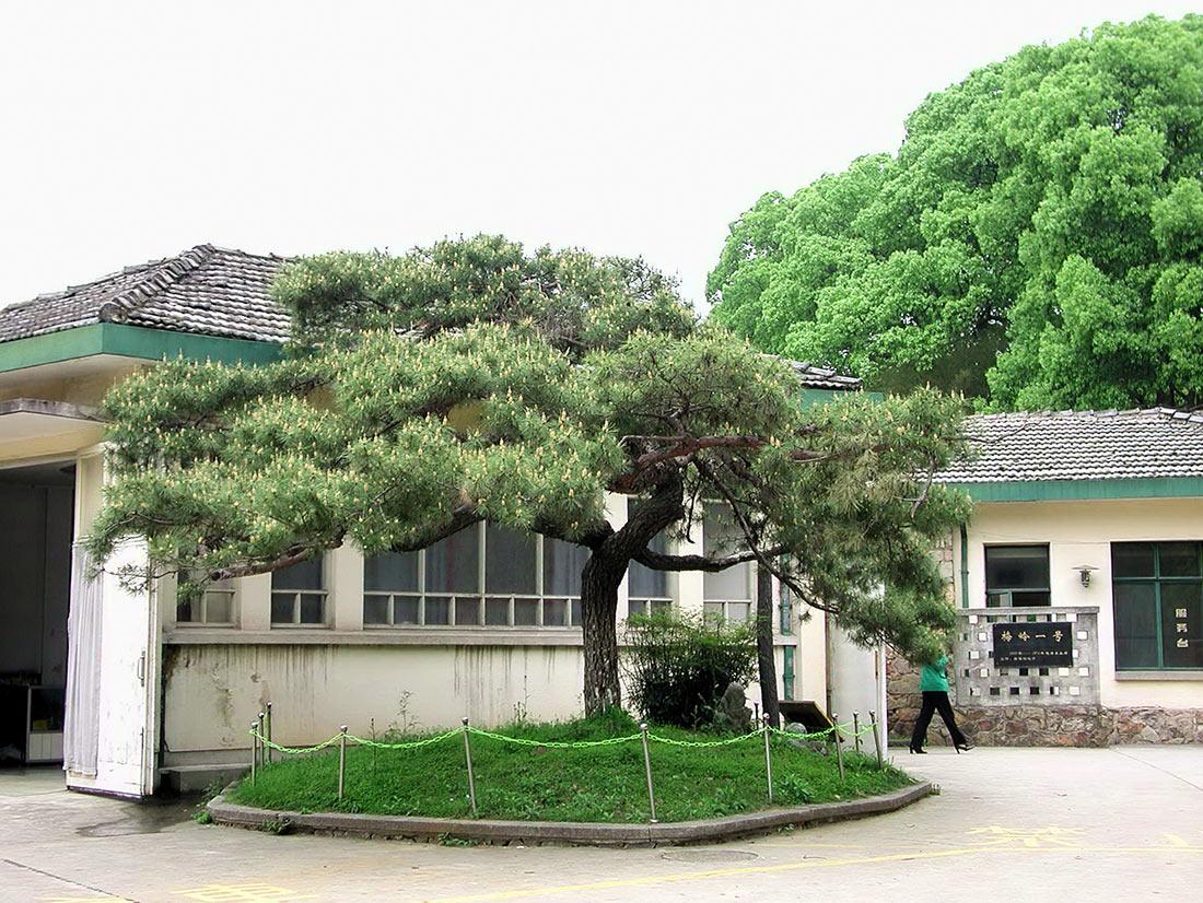 Резиденция Мао Цзэдуна в Ухани