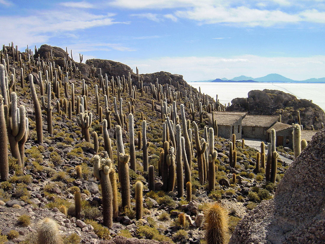 Исла-дель-Пескадо