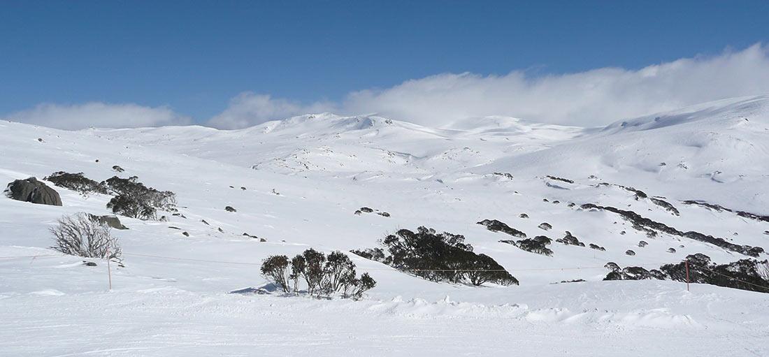 Снежные горы Австралии