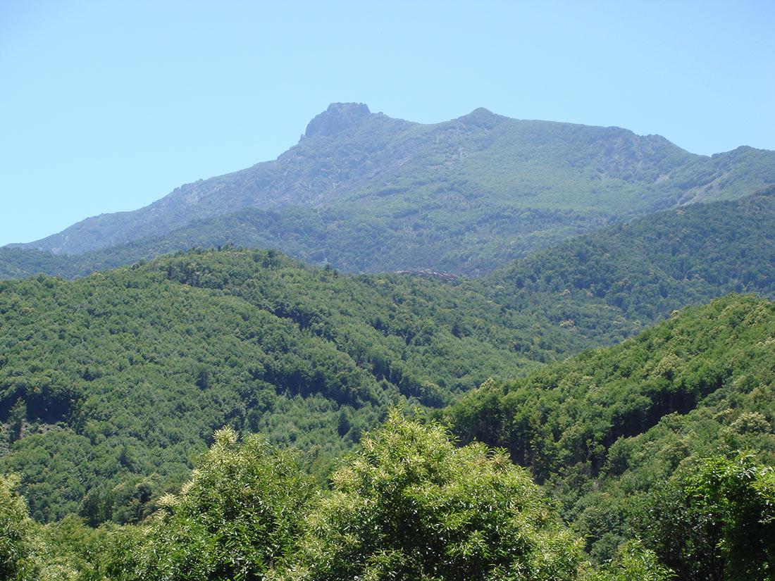 Регион Кастаньичча