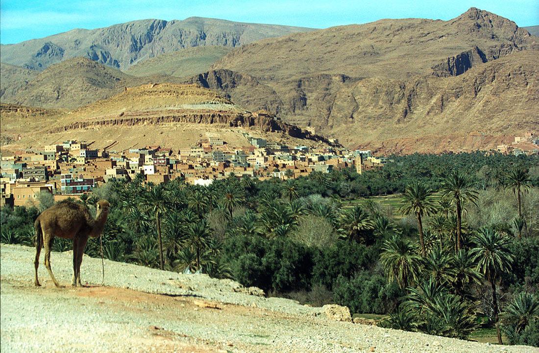 Долина Дадес