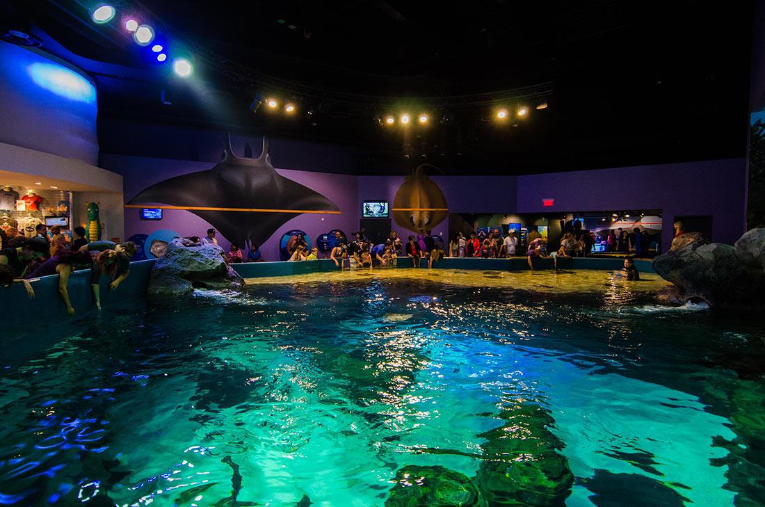 Канадский аквариум Рипли