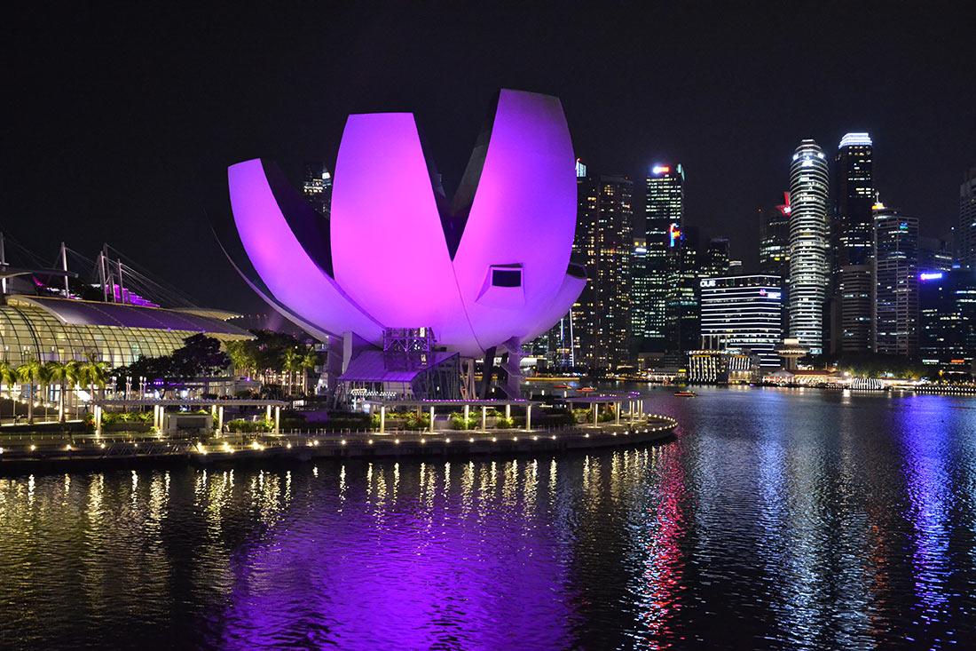 Достопримечательности Сингапура: Музей искусства и науки