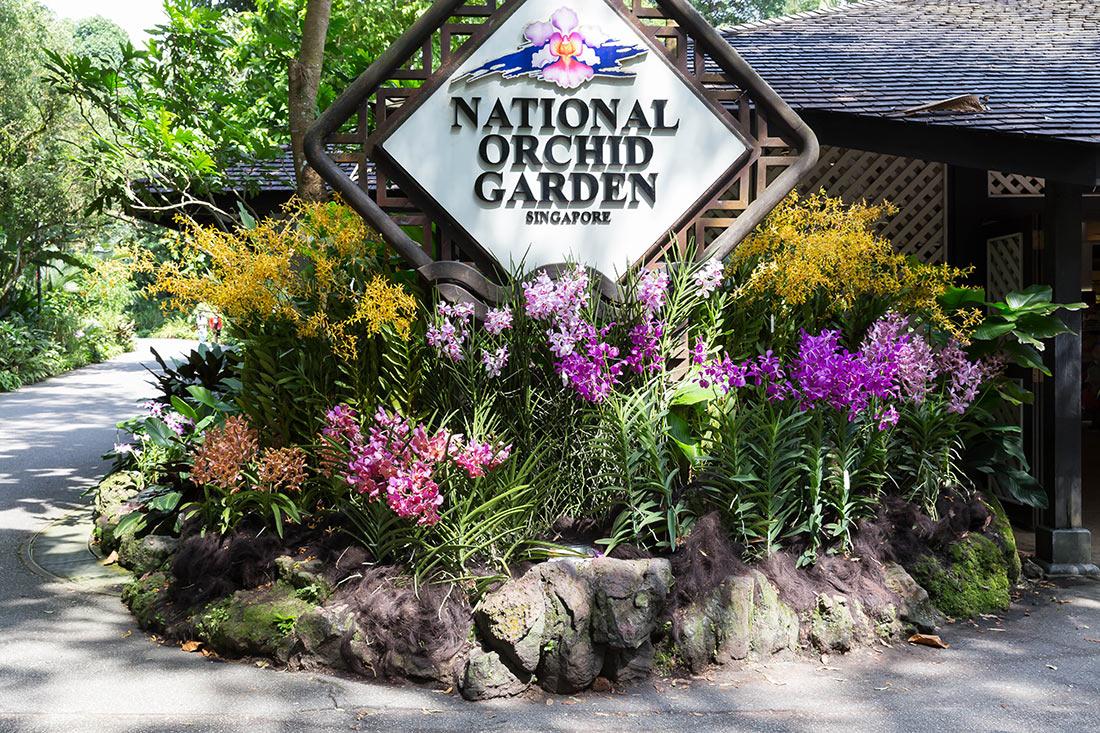 Достопримечательности Сингапура: Национальный сад орхидей