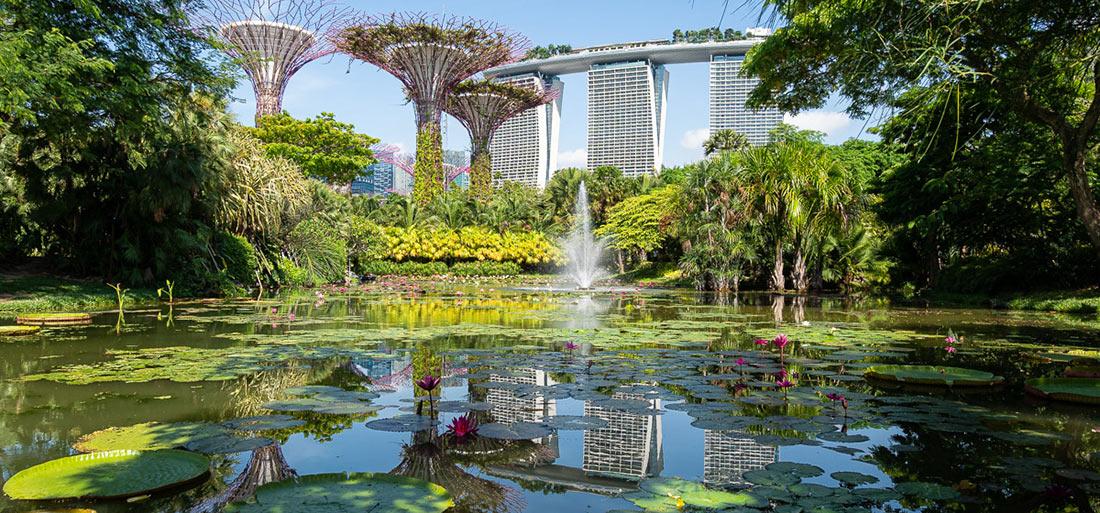 Природный парк Сады у залива