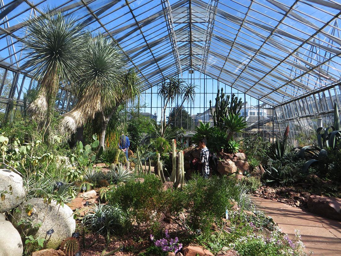 Королевский ботанический сад (Royal Botanic Garden Edinburgh)